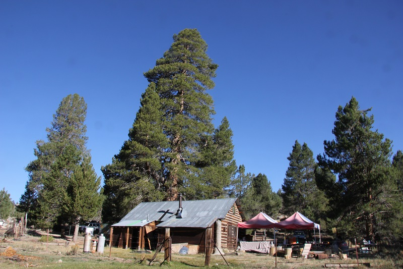 Monache Cabin