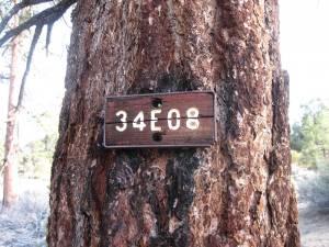 IMG 3563