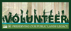 volunteer-with-trees-in-background-picture-300x132