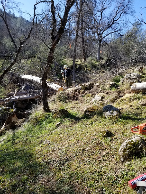 20180225 Creek Rock Log Section Before
