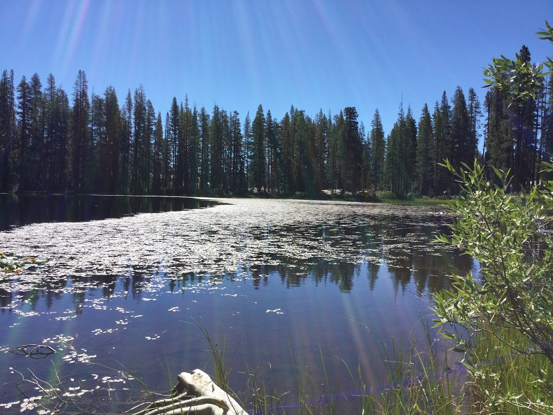 Cora Lake 4