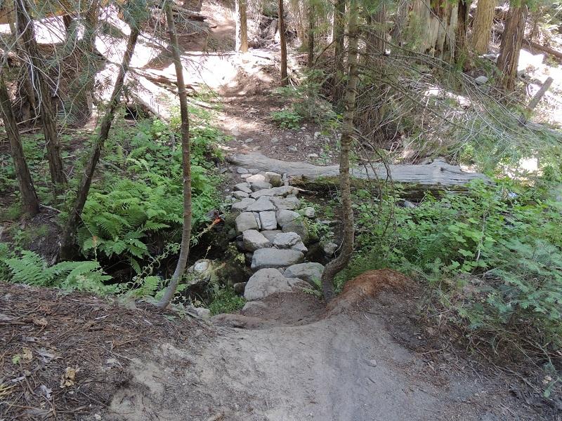 Causeway Looking Down Trail