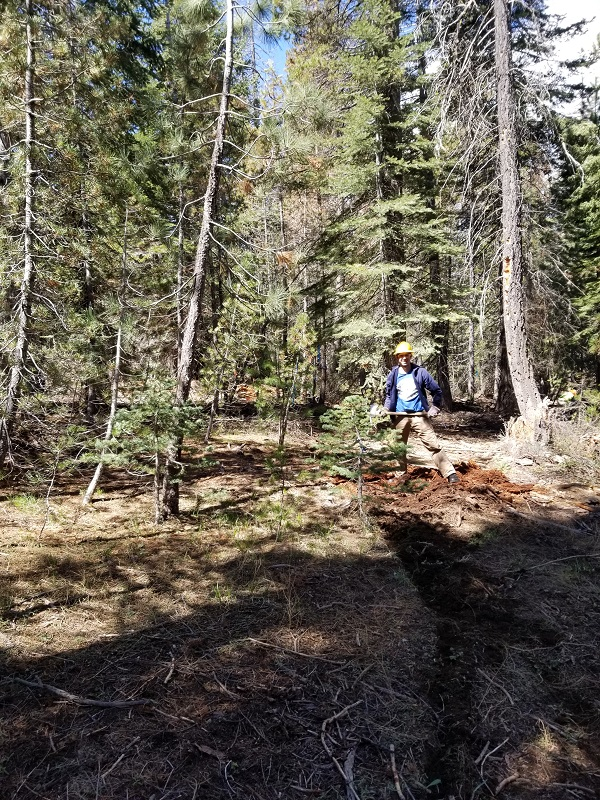 Creating First Trail Cut