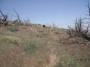 11. Marlane At Rocks On Trail