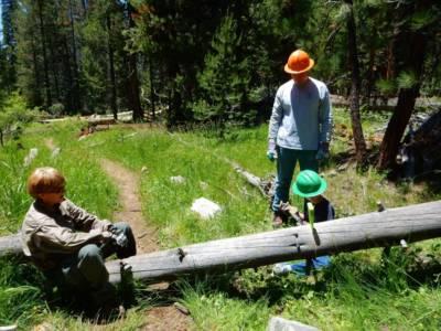 Future Log Cutter In Training