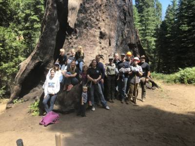 Group In Front Of Stump