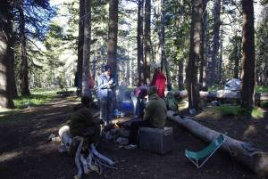 Morning Camp Scene