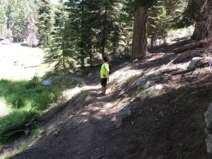 Trail Sluff Off On Approach To Meadow