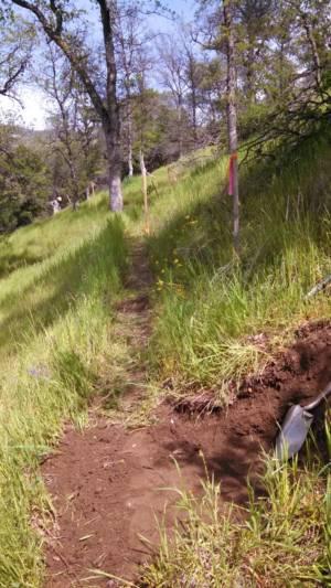 Trail Layout