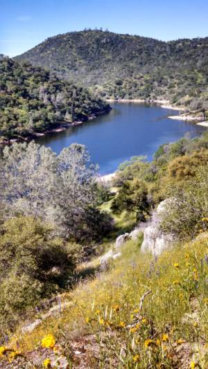 View Of Lake From Trail