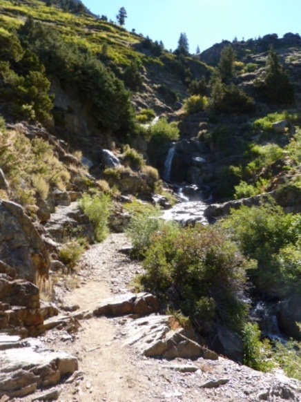 Trail In Waterfall