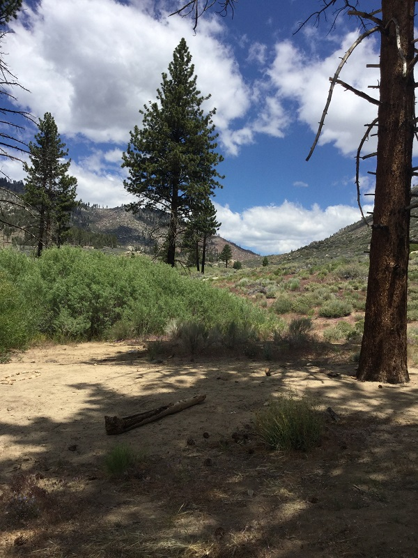 View From Trail 2