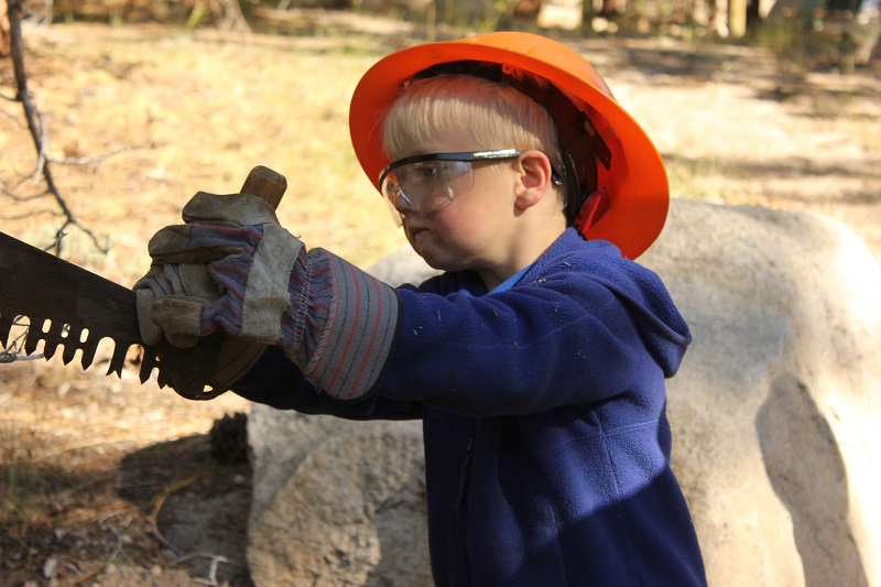 Young Kid With Saw Cute