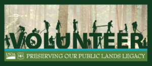 Home Page volunteer-with-trees-in-background-picture-697 x 300